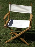 A traditional directors chair, on a sunny lawn.